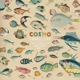 COSMO SHELDRAKE-THE MUCH MUCH HOW HOW AND I