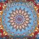 DREAM THEATRE-LOST NOT.. -LP+CD-