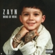 ZAYN-MIND OF MINE -DELUXE-