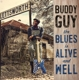 GUY, BUDDY-BLUES IS ALIVE AND WELL