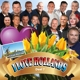 VARIOUS-I LOVE HOLLANDS DEEL 7