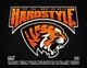 VARIOUS-HARDSTYLE TOP 100 BEST OF 2016