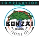VARIOUS-BONZAI COMPILATION CHAPTER ONE