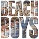 BEACH BOYS-BEACH BOYS