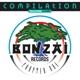VARIOUS-BONZAI COMPILATION - CHAPTER ONE