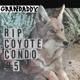 GRANDADDY-RIP COYOTE CONDO #5