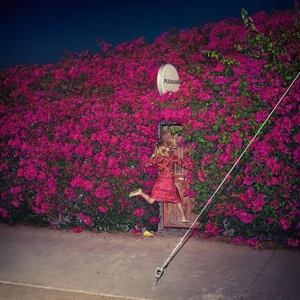 FEIST-PLEASURE -DIGI/LTD-