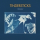 TINDERSTICKS-DISTRACTIONS