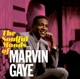 GAYE, MARVIN-SOULFUL MOODS OF MARVIN..