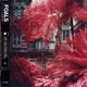 FOALS-EVERYTHING NOT WILL BE LOST - PART 1 / ...