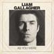 GALLAGHER, LIAM-AS YOU WERE