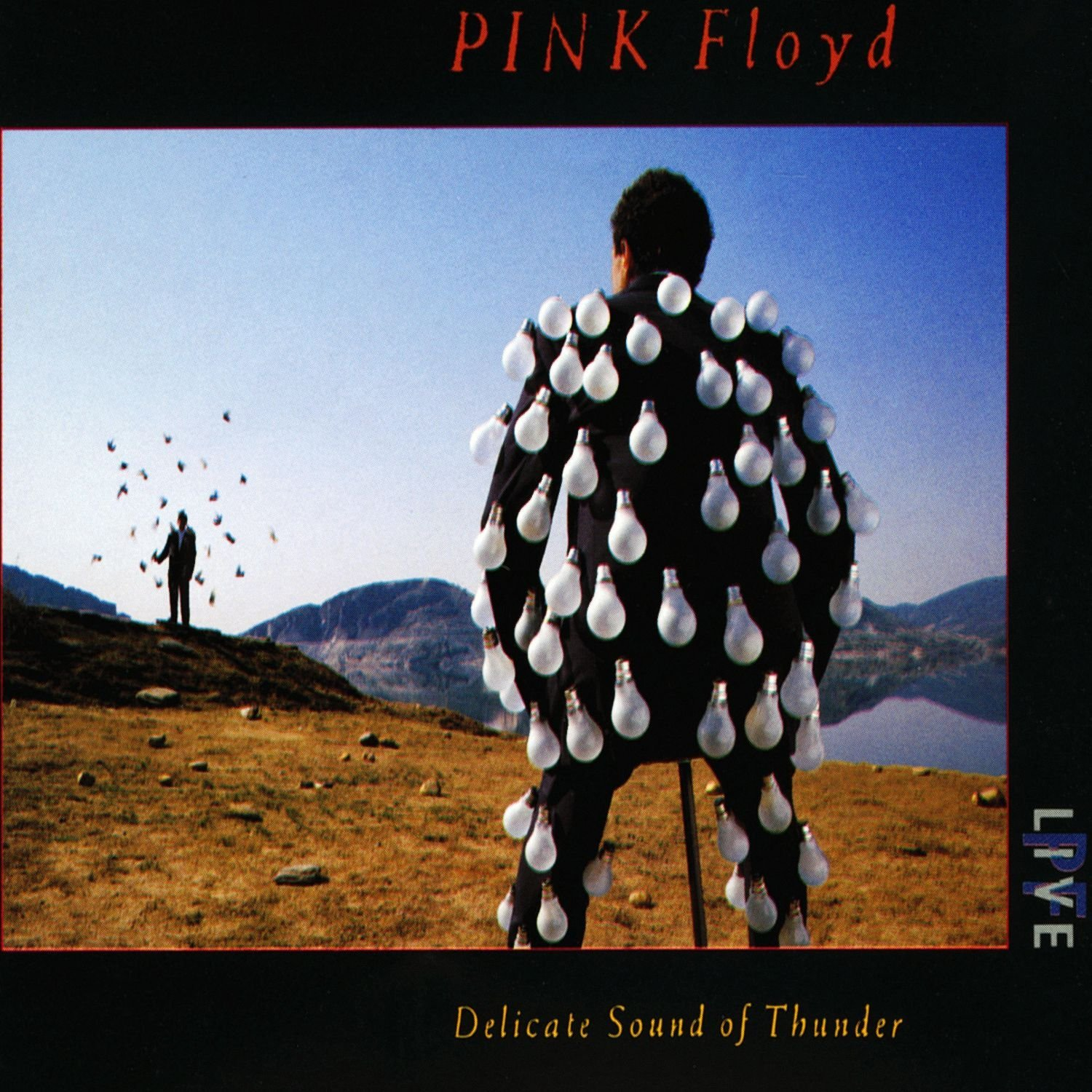 PINK FLOYD-DELICATE SOUND OF THUNDER