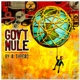 GOV'T MULE-BY A THREAD